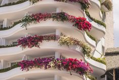 Gallery - Best Resorts In Puerto Vallarta - Grand Miramar All Luxury Suites & Residences