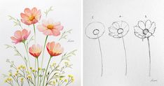 Artist Reveals the Simple Steps to Drawing Perfect Flowers draw - Drawing Tips Watercolor Drawing, Watercolor Illustration, Watercolor Flowers, Watercolor Paintings, Flowers Draw, Cosmos Flowers, Flower Drawing Tutorials, Art Tutorials, Drawing Skills