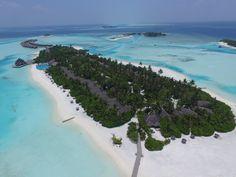 Erlebnisbericht unseres 10-tägigen Urlaubs auf der Malediven-Insel Anantara Dhigu. Urlaubsparadies Malediven mit Kindern erleben!