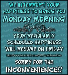 We interrupt your happiness to bring you Monday Morning. monday good morning monday humor i hate mondays monday morning monday greeting funny monday quotes monday comment Monday Morning Quotes, Funny Good Morning Quotes, Monday Quotes, Its Friday Quotes, Work Quotes, Daily Quotes, Funny Quotes, Qoutes, Motivational Memes