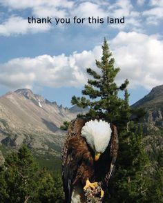 Our Thanks