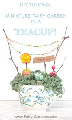 This is the most delightful miniature fairy garden in a TEACUP. This site has the full DIY Tutoiral so that you and your kids can make one too :: FairyGardens.com