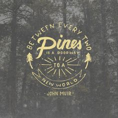 """Between every two pines is a doorway to a new world."" ― John Muir"