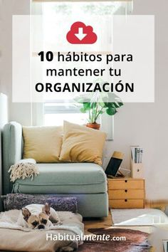 The current global health architecture does not represent this ideal. A major problem with the current system, I argue, is that it can be characterized. Pray Quotes, Small Room Design, Konmari, Organize Your Life, Life Motivation, Home Hacks, Light Photography, Closet Organization, Feng Shui