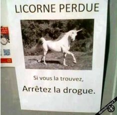 """Im just guessing this says """"Lost unicorn! because unicorns really exist.<<<boi it says lost unicorn if found stop doing drugs. Funny Facts, Funny Jokes, Hilarious, Haha, Image Fun, Funny Cute, Funny Photos, Make Me Smile, I Laughed"""