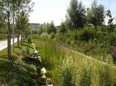 Martin Luther King Park in Paris. By Atelier Jacqueline Osty & associes.