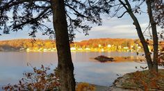 Lake Photo by Bernie Goodman sent by Patti DiGeronimo