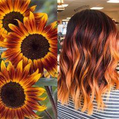 Sunflower - All For Hair Cutes Pretty Hair Color, Hair Color And Cut, Hair Colour, Brown Blonde Hair, Brunette Hair, Hair Dye Colors, Dark Fall Hair Colors, Dye My Hair, Balayage Hair
