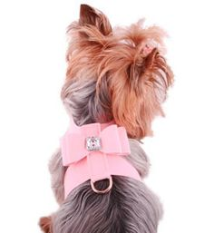 Best Walking Harness For Dogs, Soft, Adjustable, Puppy, Luxury Pet Boutique