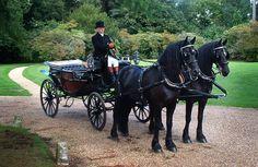 Horse Drawn Carriage London