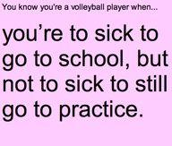 volleyball stuff - Google Search