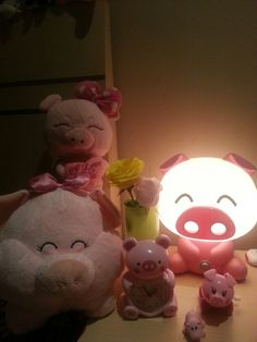 Piggy at night