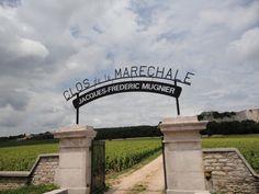 Clos de la Marechale Jacques-Frederic Mugnier #burgundy #wine