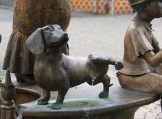 Billedresultat for pissing dachshund fountain Dachshund Funny, Dachshund Art, Daschund, Scottish Terrier, I Love Dogs, Cute Dogs, Animals And Pets, Cute Animals, Weenie Dogs