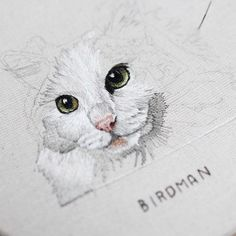 Pretty kitty #embroidery #hoopart #needlepainting #threadpainting Cat Embroidery, Hand Embroidery Projects, Embroidery Stitches, Embroidery Patterns, Advanced Embroidery, Learning To Embroider, Pretty Cats, Pretty Kitty, Art And Craft Materials