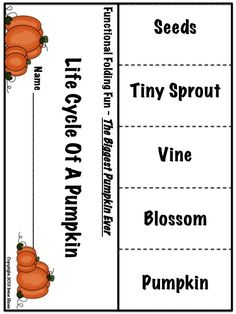 "THE BIGGEST PUMPKIN EVER ~ Written By Steven Kroll... This October and Halloween Unit now has 101 pages of ideas, activities, printables, graphic organizers and foldables that correlate with the book ""The Biggest Pumpkin Ever."" $"