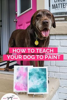 Have you heard of a DIY dog lick painting? This lick painting trend made the rounds on TikTok earlier this year. This art project is good for all levels. You don't need to be artistic to make something beautiful. One of the reasons this trend took off online is because it's so easy to do, it's quick and you don't need a lot of supplies. Plus, who doesn't want to paint with their dog? Chocolate Labradors, Chocolate Labs, Dog Washing Station, Durable Dog Toys, Dog Artwork, Diy Dog Treats, Dog Crafts, Dog Blanket, Dog Wear