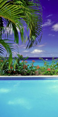 Find the beauty in #Barbados.