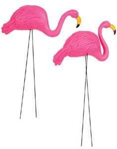 "Amazon.com: Two 26"" Pink Flamingo Party Decoration Yard Ornaments: Patio, Lawn & Garden"
