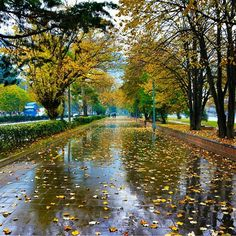 """Günaydın / Good Morning #OrduSahil #ordu #karadeniz #turkey #adventure #amazing #bestoftheday #follow #followme #follow4follow #happy #igers #instadaily…"" Turkey Travel, Science And Nature, River, Amazing, Photography, Outdoor, Turkey Country, Outdoors, Photograph"