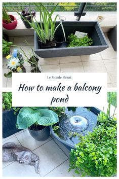 How to make a small balcony pond Diy Pond, Balcony Decoration, Water Features In The Garden, Outdoor Ideas, Plants, How To Make, Inspiration, Floral, World