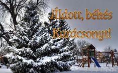 Áldott Karácsonyt - Kaposmérő! - Karácsonyi képeslap letöltés