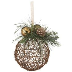 I pinned this Nature's Tidings Ornament from the Trim the Tree event at Joss and Main!
