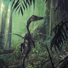 This fast little dinosaur hunter, Troodon, lived on the forest floor and was a terror to frogs, other small reptiles, birds, and small mammals.