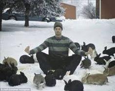 clicker training a rabbit, training a rabbit, clicker training your rabbit, training your rabbit
