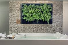Quadro Vivo® : Spa translation missing: br.style.spa.moderno por Quadro Vivo Urban Garden Roof & Vertical