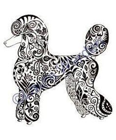Beautiful Poodle Doodle