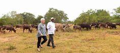 #Museveni tells #US ambassador he cannot relinquish power - #Uganda #AgeLimit
