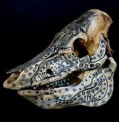 Jason Borders - Boar Skull