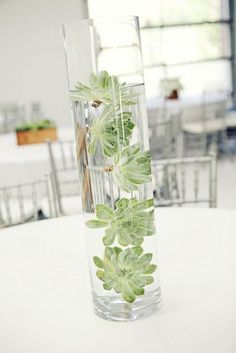 105 Creative Succulent Wedding Decor Ideas Submerged succulents wedding centerpiece / www. Succulent Wedding Centerpieces, Wedding Flower Arrangements, Centerpiece Flowers, Centerpiece Ideas, Centrepieces, Succulant Wedding, Submerged Centerpiece, Lavender Centerpieces, Table Arrangements