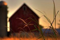 """קניית נכסים במושבים – היכן שווה להשקיע בנדל""""ן - איזבלה נכסים בכפר http://isabellas.co.il/village_life.asp?id=45"""