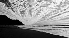 gray whale cove beach. montara, california, usa. 2011.