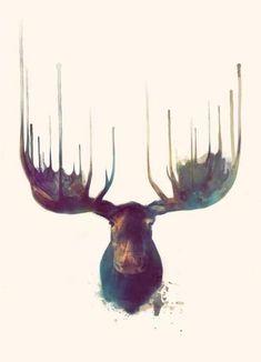 Moose als Leinwandbild von Amy Hamilton | JUNIQE