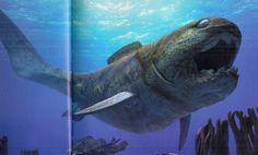 Dunkleosteus lived during the late devonian to early carbonifrus before the dinosaurs in the paleozoic era. With the largest bone crushing bite it was the largest fish at it's time. Larger than a human and great white shark if alive today could bite through steel