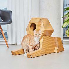 Un monument célèbre en guise de maison pour votre chat