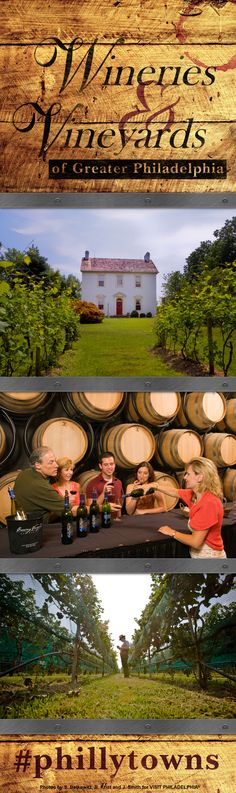 The Wineries and Vineyards Trail of Greater Philadelphia