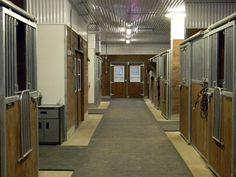 Stone Meadows Equestrian Centre - Facilities
