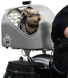 Round Hound® Biker Dog Carrier. But does it mount to a bicycle, that's what I want to know! Too funny!
