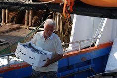 Fisherman in Castiglione, Italy