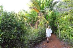 Ankazoberavina, Madagascar Madagascar, Places Ive Been, Plants, Plant, Planets