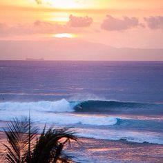 Atlantic Aloha