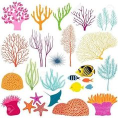 Image result for coral reef stencils