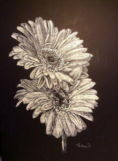 The Twin Gerber Daisies Fairy Flowers Scratchboard Art