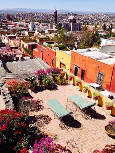 A Gringo Guide to Living in San Miguel de Allende –A complete 150 page, perfect bound book a guide, and advice for living and enjoying San Miguel de Allende as a resident or a visitor. A fun fille…