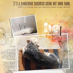 Justiina, our youngest Dandie Dinmont Terrier, being dangerous. Photos taken 1 June 2016 by me Resources by Anna Aspnes: - template from Spring Template. It's A Dangerous Business Curtains To Go, Spring Template, Dandie Dinmont Terrier, The Door Is Open, Scrapbooking Layouts, In This Moment, Deviantart, Business, Business Illustration