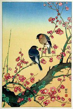 Ohara Koson / Plum Blossom and Oriental Bullfinch